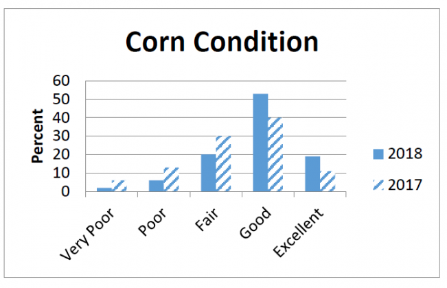 Indiana Corn Conditions