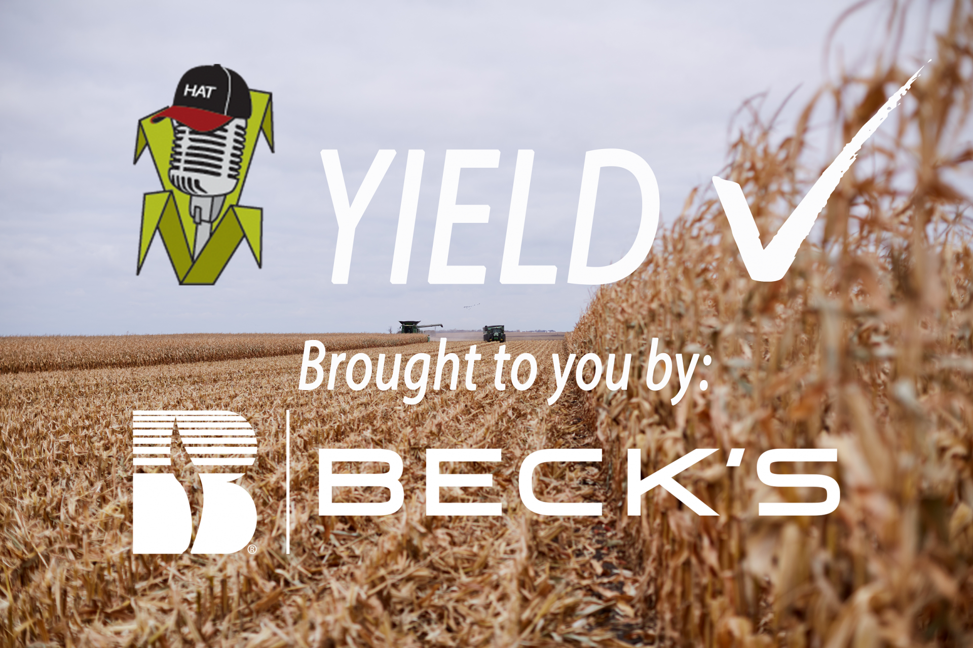 Northern Indiana Soybean Yields Anywhere From Excellent to Underwhelming